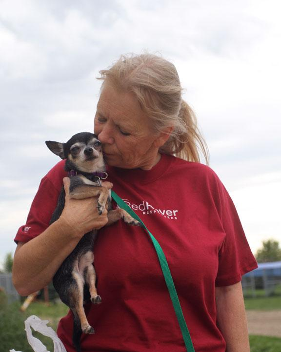 RedRover Responders volunteers shelter and care for animals displaced by disasters and other crises