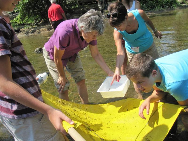 Our CEO Lisa (in purple) conducts water monitoring with Earth Force kids in Michigan