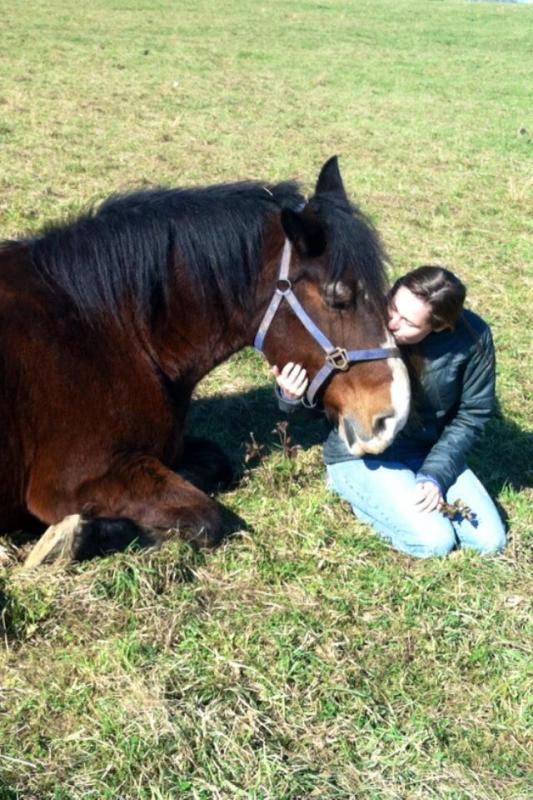 Volunteering is rewarding, to both horse and human.