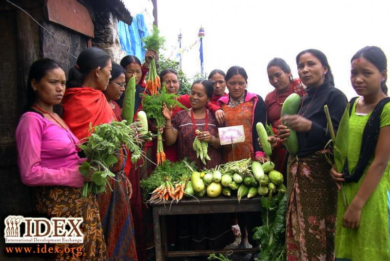 Our partner in Nepal, ASHA implements sustainable agricultural through women's groups.