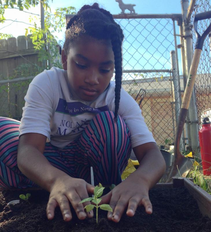 Anisa Williams helps planting her new backyard vegetable garden.