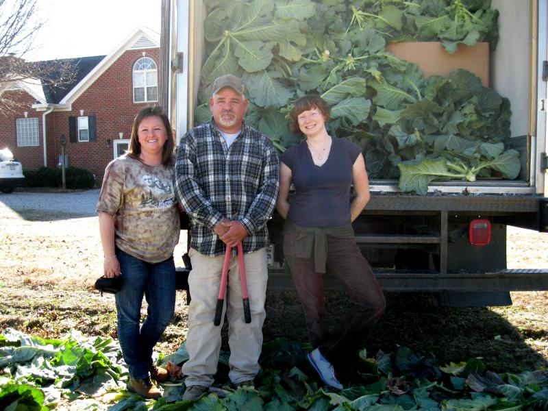 A truck full of gleaned collards from a local farm, ready to be distributed to those in need