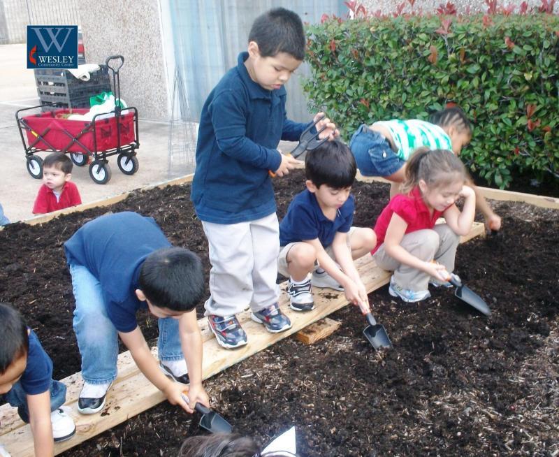 Community Garden Effort