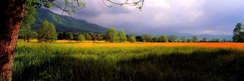 Cades Cove by Jim Mowbray