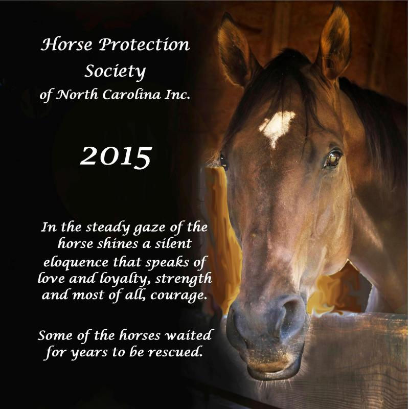 Please help us feed our horses with the purchase of our 2015 Calendar! They make wonderful gifts and are a terrific way to follow the herd! The cost is $19.95 & the postage for one calendar $3.25 & $3.75.  Visit http://www.horseprotection.org/