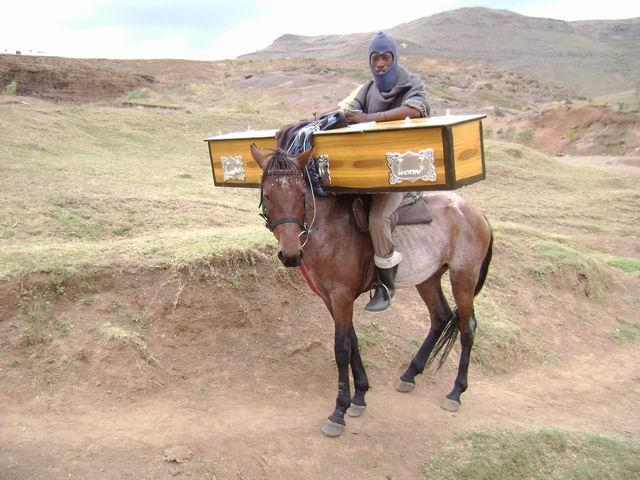 we help people living in rural areas who depend on their animals for their livelihood