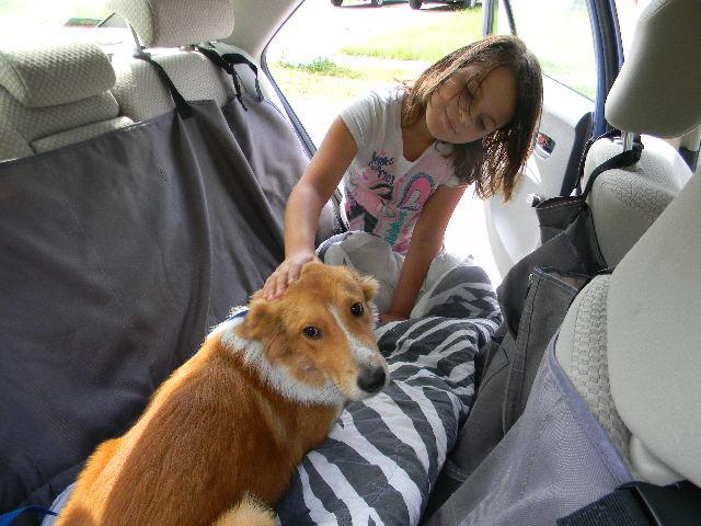 Bart going to his new home!