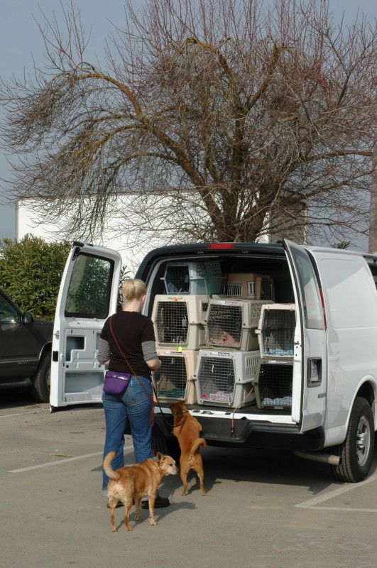 Marin Humane Society's Pet Partnership Program rescues animals from throughout California