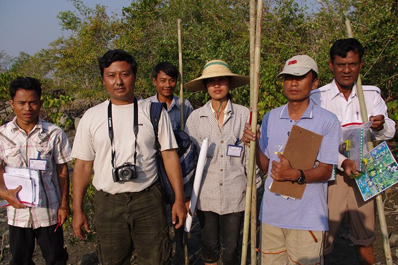 Ecological Mangrove Restoration Group