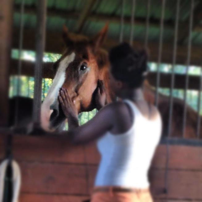 Equine Assisted Learning teaches self control,