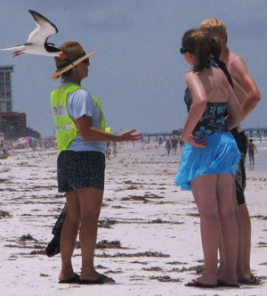 Florida Broadband volunteered to steward nesting sites of native black terns.