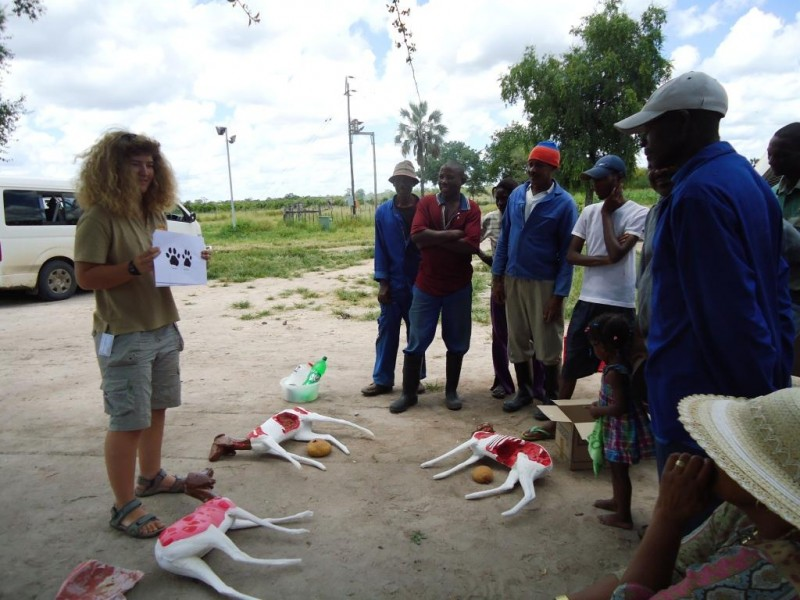 CCF trains livestock farmers and conservation biologists in best practices.