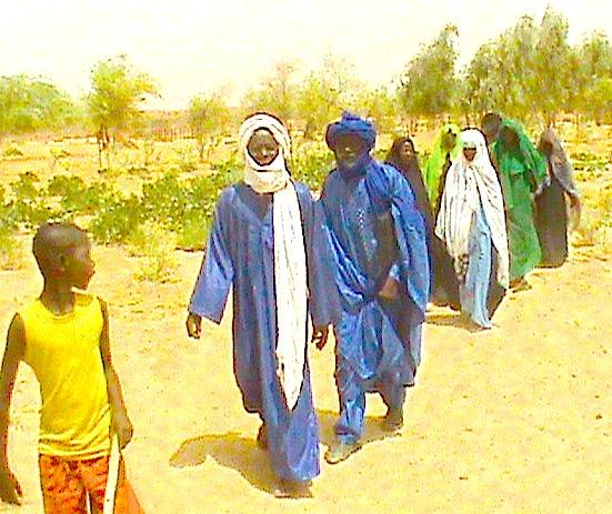 Gao, Mali elders, women and youth walking to a site where they planted in 2013.