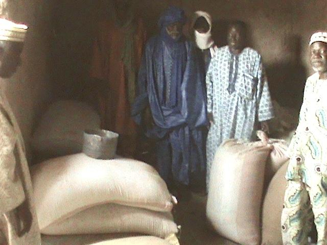 Gao, Mali farmers receiving seed rice for planting in 2013.