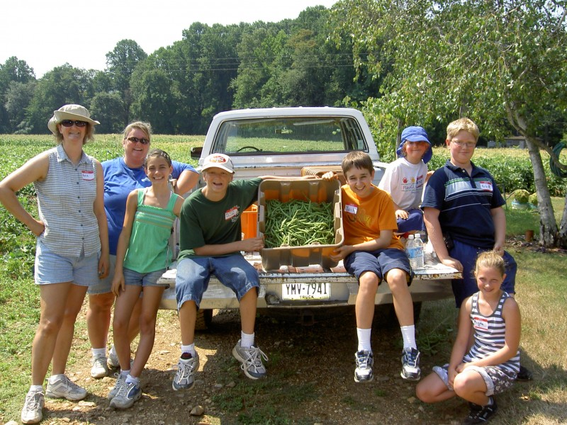 Gleaning volunteers at a local farm getting green beans
