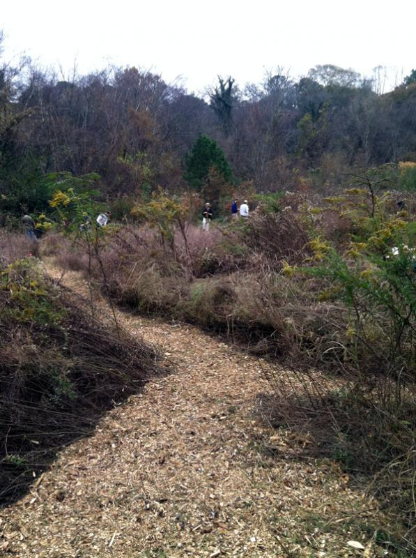 Work progresses on the Meadow Loop Trail