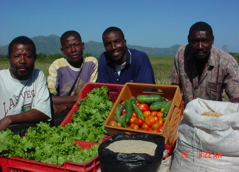 Farmer-to-Farmer program in Haiti