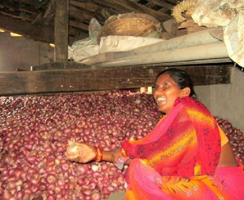 Onion Cultivation,Bongomunda