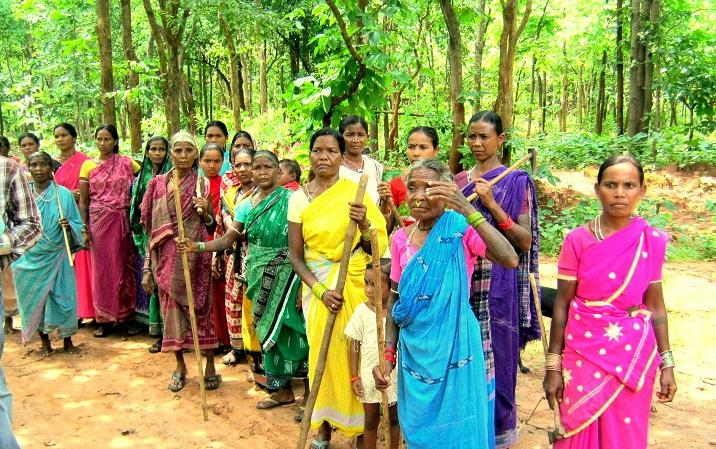 Forest Protection,Bolangir , odisha, india