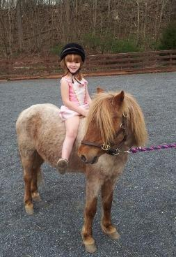 A owner surrendered pony with one of our Jr volunteers.