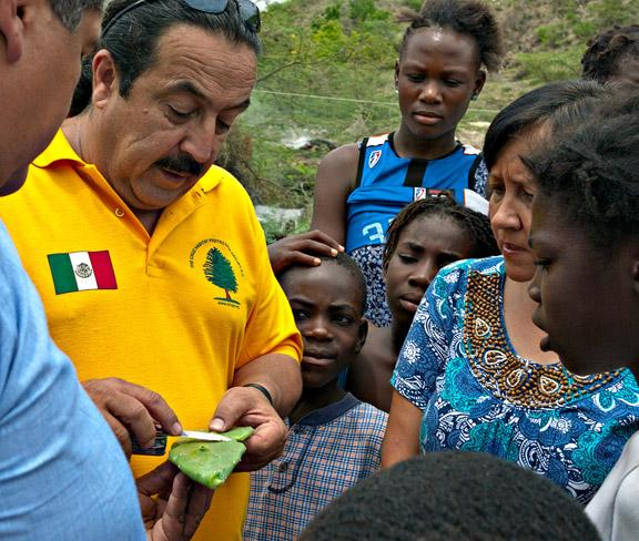 Jose Luis Alvarez show Haitians how to clean a Prickly Pear pad for food.