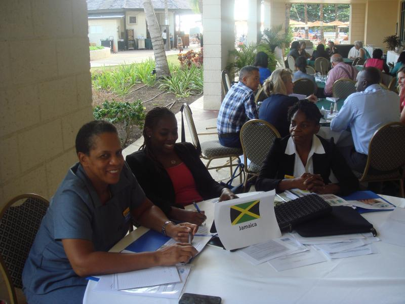 Jamaica workshop group in the availability and rational use of opioid analgesics in the Caribbean workshop