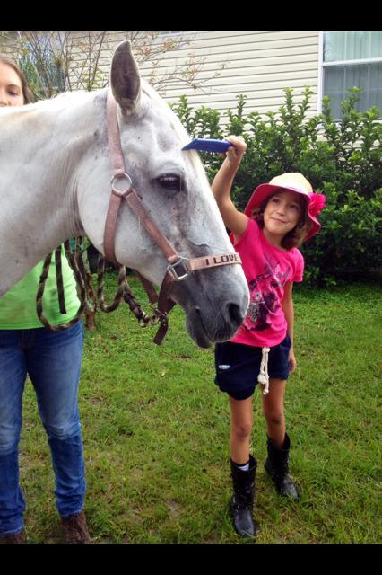 Brushing Horses