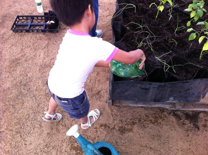 Clidren bringing water to the plants in t