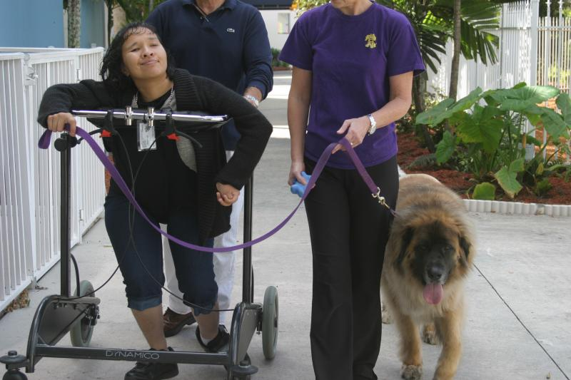 Walking a dog provides great motivation in Physical Therapy