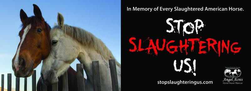 Stop Slaughtering Us