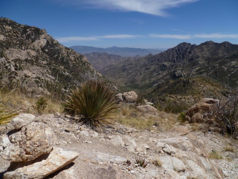 Arizona Trail- Santa Catalinas