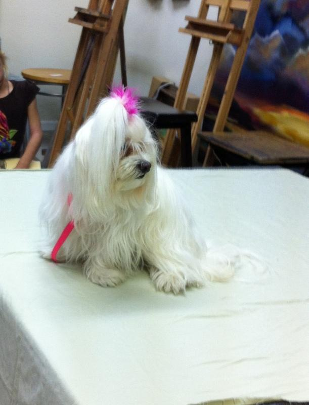 Miss Lily the White modeling for a children's art class