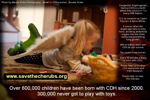 Save the Cherubs CDH Awareness Campaign