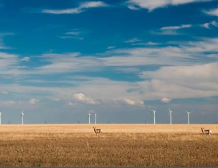 WELC protects the West from the impacts of climate change.  Photo: iStock.