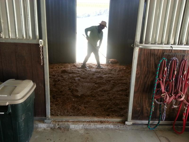 Cleaning a Stall