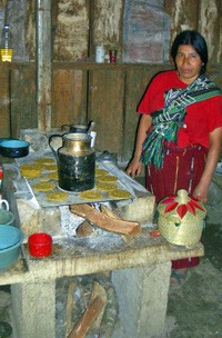 Safe stoves improve health and safety in homes.