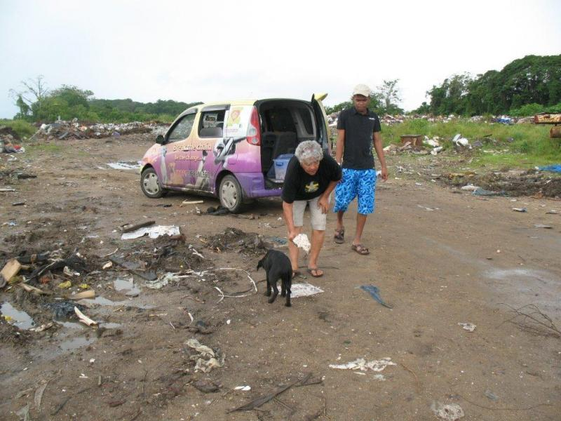 Foundation Henk Abrahams-Suriname feeding dogs at the city dump
