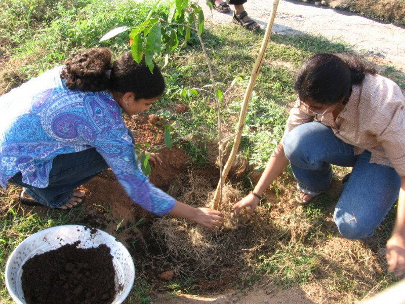 Think Green, Bhumi's environmental initiative