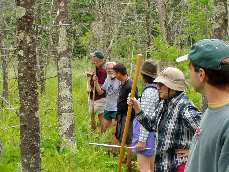 Adults enjoy exploring Dory's Bog State Natural Area.
