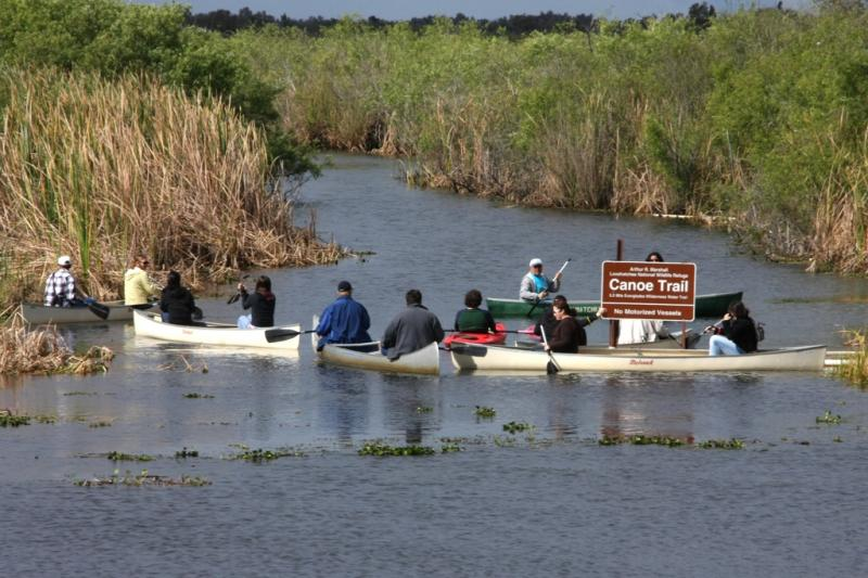 Everglades Day Canoe Trip
