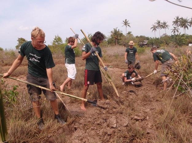 Volunteers in Thailand at a CBEMR site