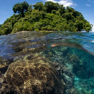 Papua New Guinea © Mark Godfrey