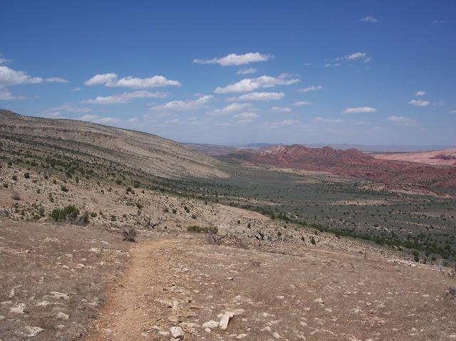 Switchbacks near the Utah border