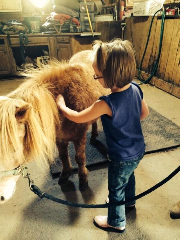 Little humans love little horses!
