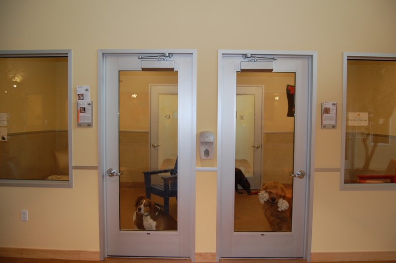 Canine Habitats in our facility
