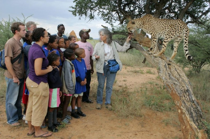 Youth and school groups learn about cheetah conservation through CCF's education programmes.