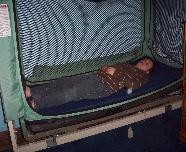 Safety Bed provided for child