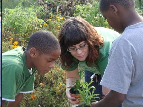 Teaching and Growing - farms and gardens