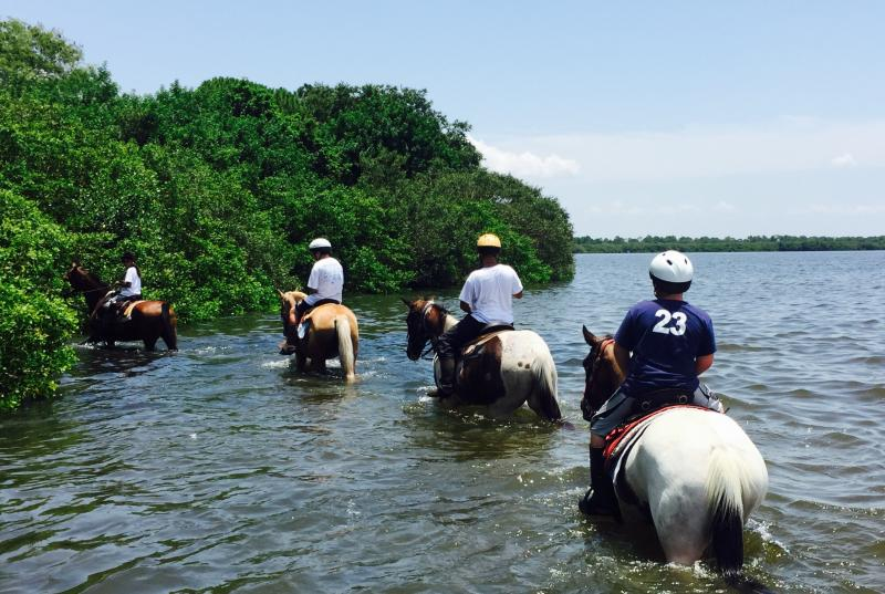 High Tide during trail ride in the bay!