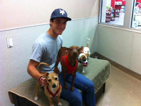 Volunteer Jonathan with Lollipop, Mojo Houdini and Jomax